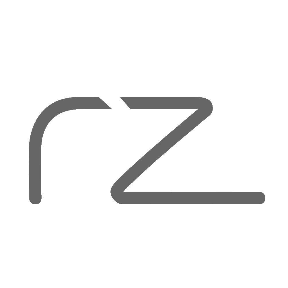 RZ Consulting logo
